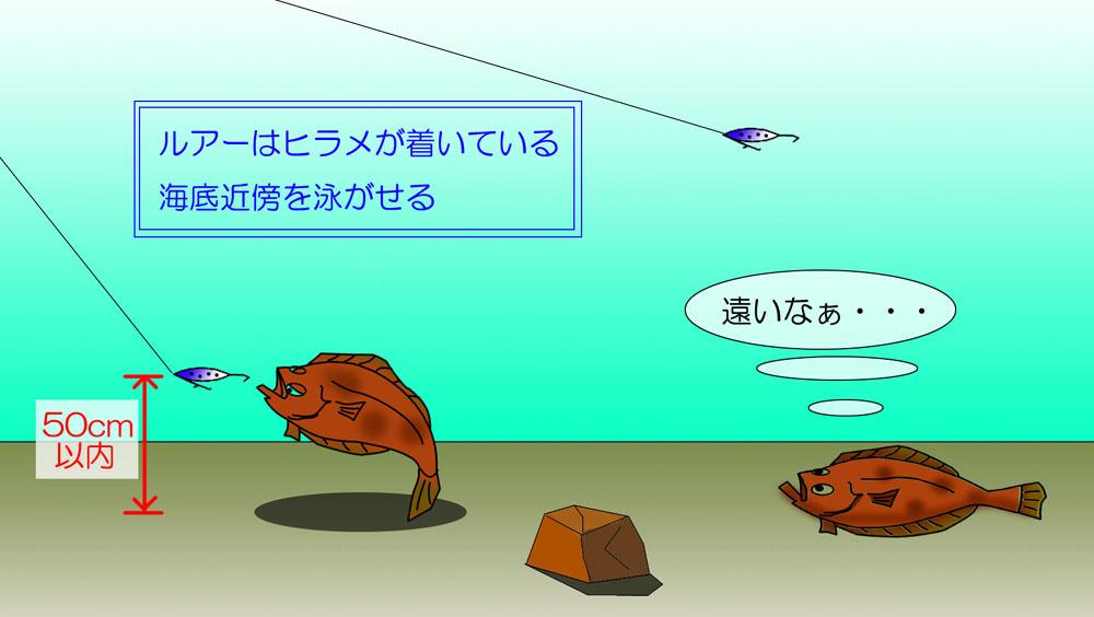 ただ巻きのレンジは海底から50cm以内