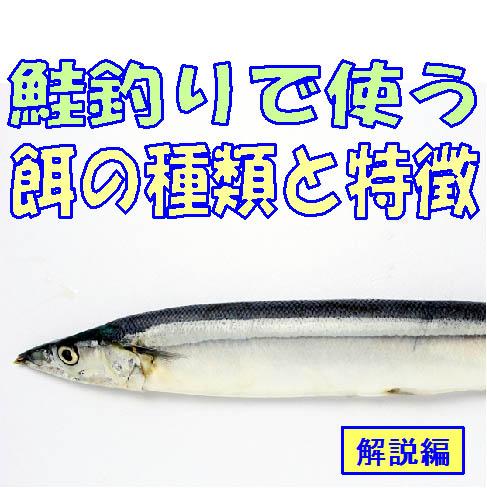 鮭(アキアジ)で使う餌の種類と特徴